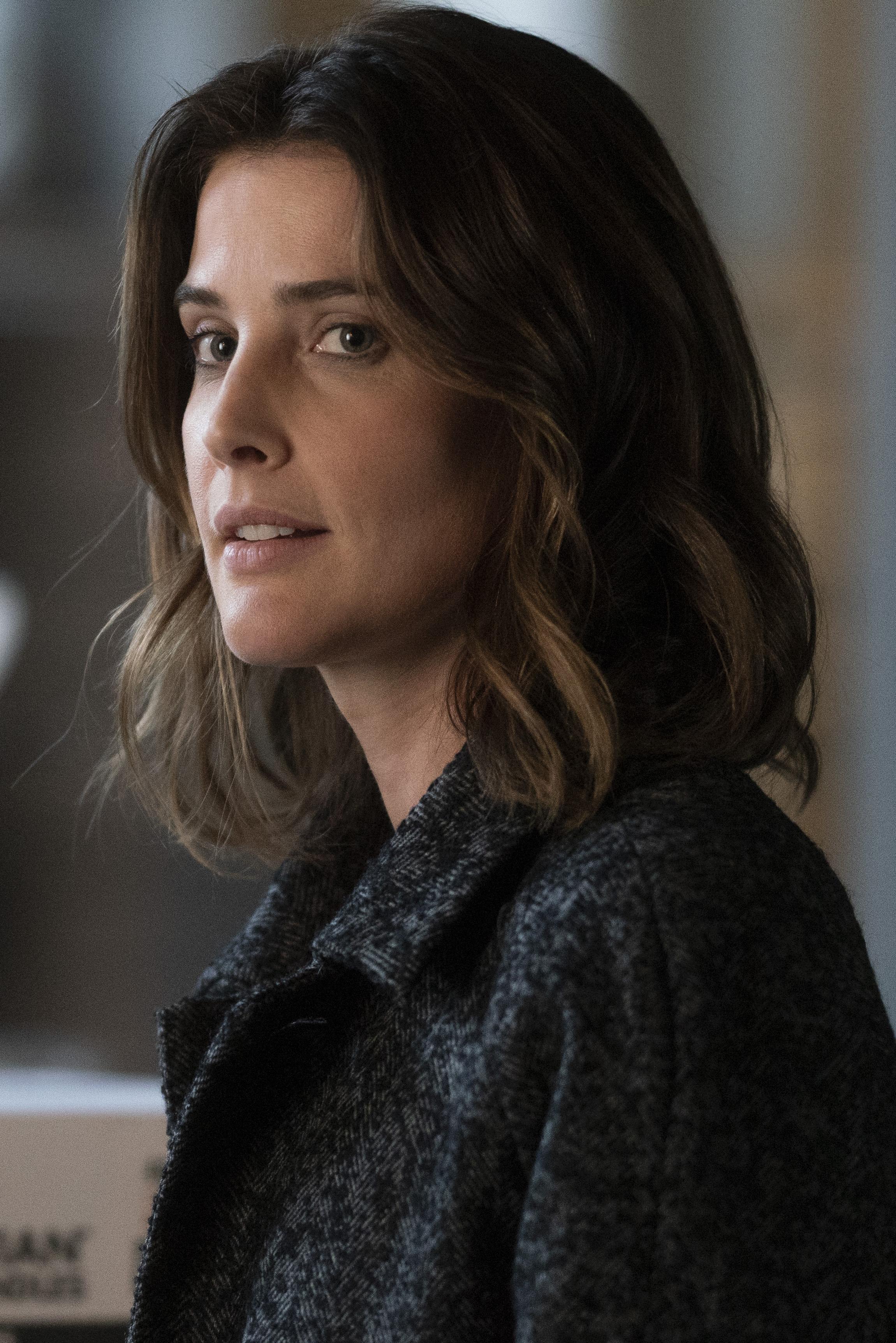 Cobie Smulders Stars in Stumptown New ABC TV Show